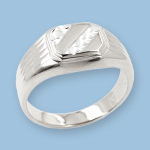 04120072-6 Серебряная печатка